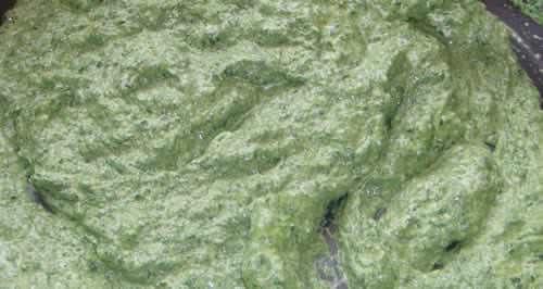 Ricetta crema spinaci