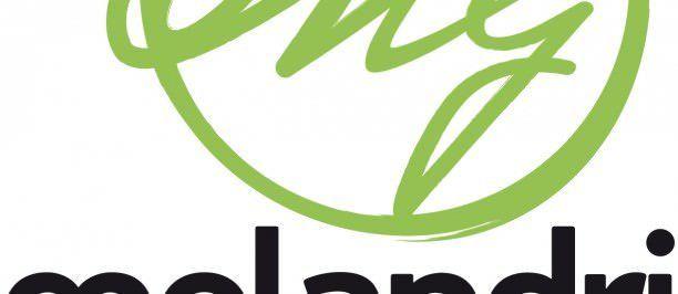MELANDRI_logo+blogger