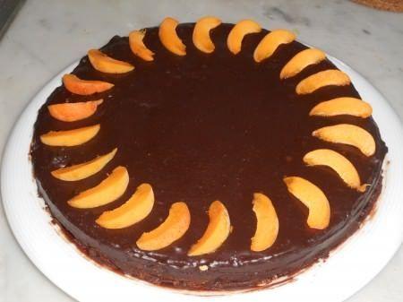 Torta di albicocche ricoperta di cioccolato ricetta e foto