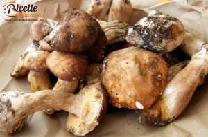 Le 10 migliori ricette con i funghi