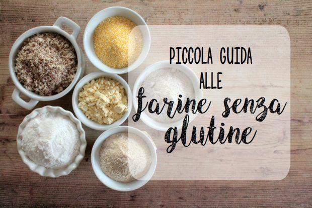 Piccola guida alle farine senza glutine 1