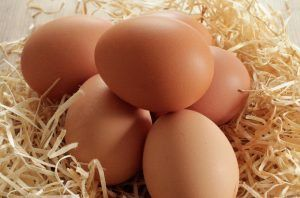 Uova (alimento)