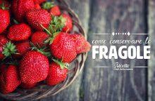 Come conservare e congelare le fragole