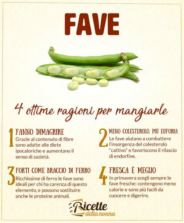 4 motivi per mangiare le fave