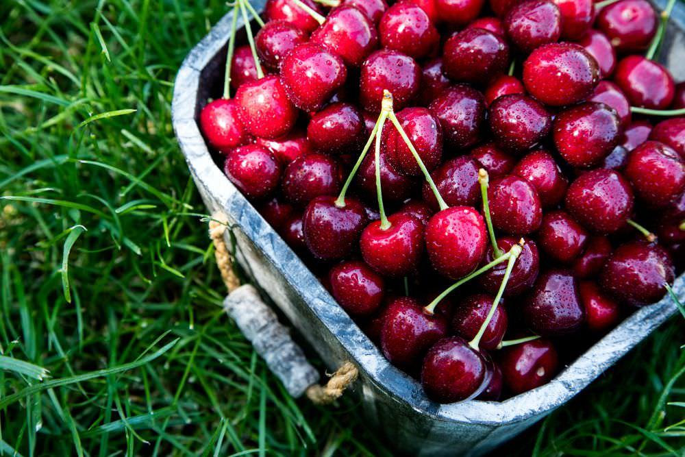 conservare le ciliegie