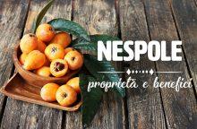 Nespole: proprietà, benefici e controindicazioni