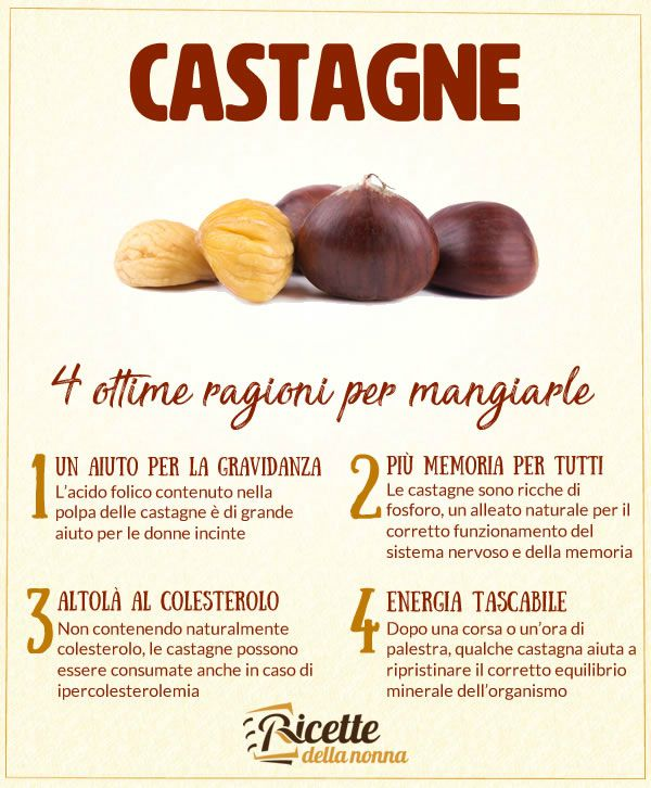 4 motivi castagne