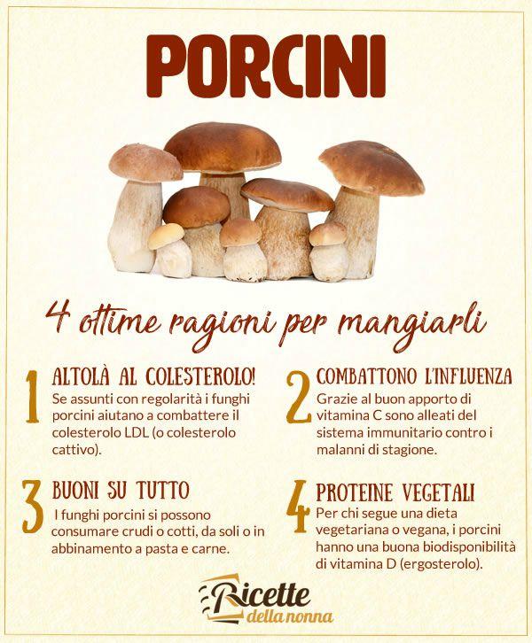 benefici funghi porcini
