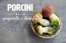 Funghi Porcini: proprietà, benefici e controindicazioni
