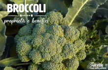 Broccoli: proprietà, benefici e controindicazioni