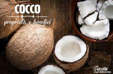 Noce di cocco: proprietà, benefici e controindicazioni