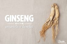 Ginseng: proprietà, benefici e controindicazioni