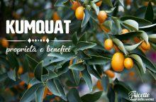 Kumquat: proprietà, benefici e controindicazioni