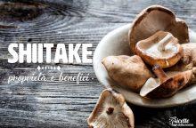 Shiitake: proprietà, benefici e controindicazioni