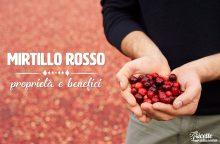 Mirtillo rosso: proprietà, benefici e controindicazioni