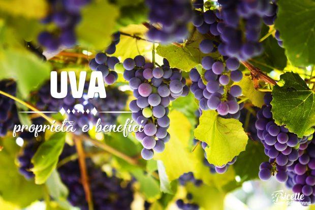 Uva: proprietà, benefici e controindicazioni