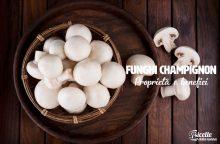 Funghi champignon: proprietà, benefici ed effetti collaterali